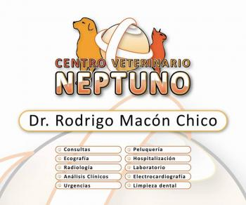 NEPTUNO CLINICA VETERINARIA